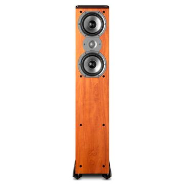 Polk Audio TSi300 3-Way Tower Speaker with Two 5-1/4