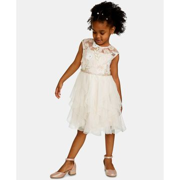 Little Girls Sequin Embroidered Dress