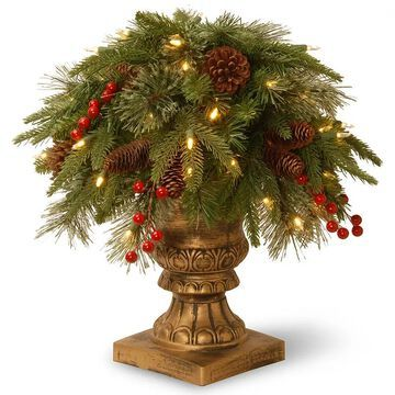 National Tree Company 24-in. Pre-Lit Artificial Pine Colonial Bush Plant, Green