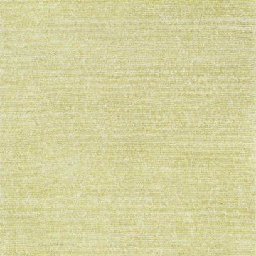 Loloi Rugs Happy Shag Collection Citron, 5'x7'6