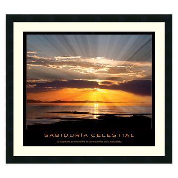 Amanti Art Sabiduria Celestial Framed Wall Art