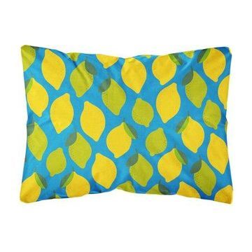 Lemons and Limes Canvas Fabric Decorative Pillow