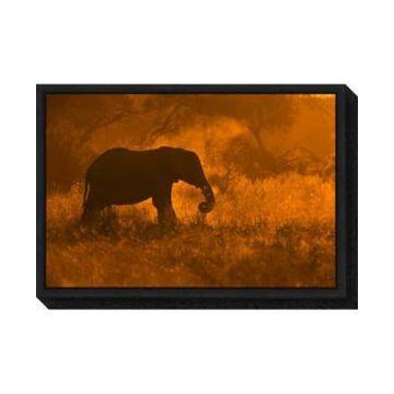 Amanti Art Golden Elephant in Savute by Mario Moreno Canvas Framed Art