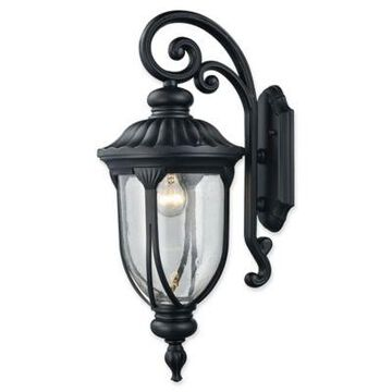 Elk Lighting Derry Hill Outdoor 23-Inch Wall Sconce in Black