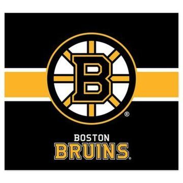 NHL Boston Bruins Single Garage Door Cover