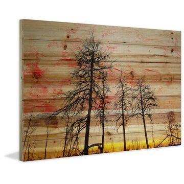 Handmade Parvez Taj - Tree Skeletons Print on Natural Pine Wood
