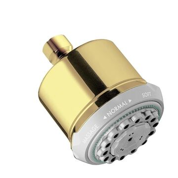 Hansgrohe Clubmaster 28496931 Polished Brass Showerhead