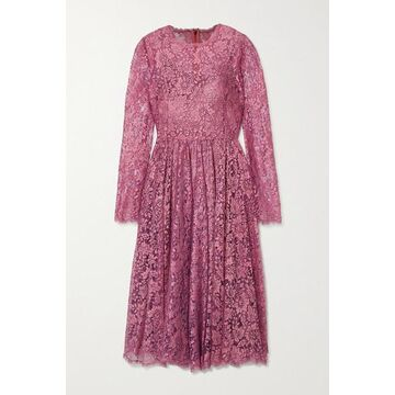 Dolce & Gabbana - Pleated Chantilly Lace Midi Dress - Pink