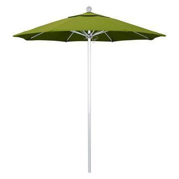 California Umbrella Venture Series, Kiwi