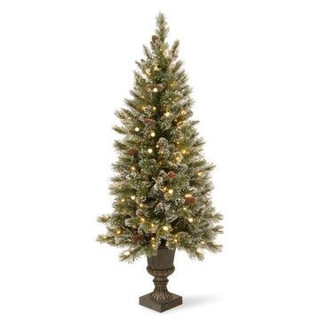 National Tree Company Decorations 5' Glittery Bristle Pine Entrance Tree