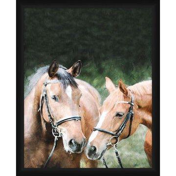 PTM Images,Paint Horses