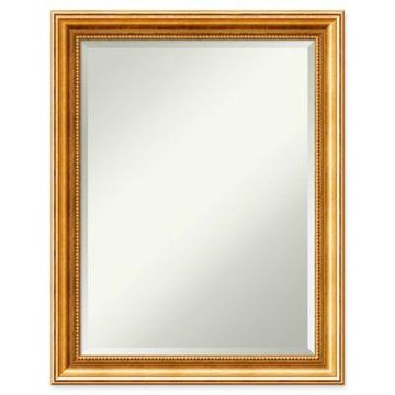 Amanti Art Townhouse Wall Mirror in Gold