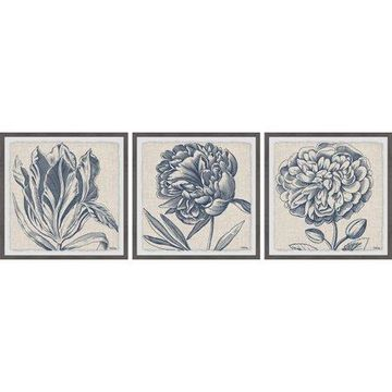 Marmont Hill Flower Sketches Triptych