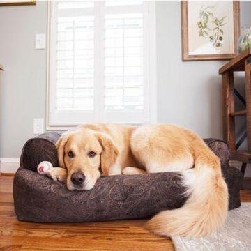 Snoozer Premium Overstuffed Sofa, Show Dog Collection, Laurel Mocha