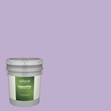 Valspar SeasonFlex Satin Magical Hgsw1425 Exterior Paint (5-Gallon)