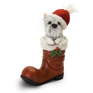 Melrose Westie in a Santa Boot