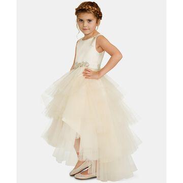 Little Girls Satin Tulle Fairy Dress