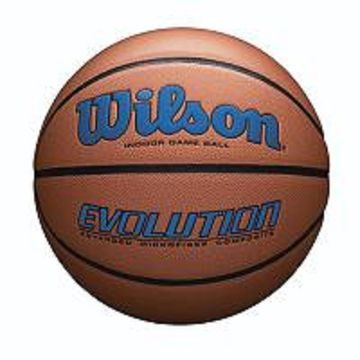 Wilson Evolution Official Size Game Basketball-Royal