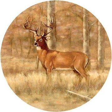Thirstystone Drink Coasters Set, Whitetail Deer