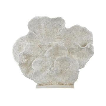 Dimond Home Cretaceous Fossil Sculpture