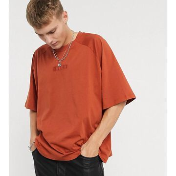 Reclaimed Vintage inspired raglan t shirt in burgundy