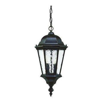 ACCLAIM LIGHTING 5516MM Hanging Light,2-Light,Marbleizd Mahogany