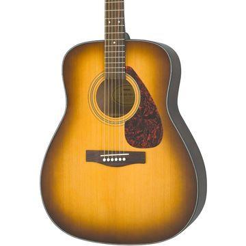 F335 Acoustic Guitar