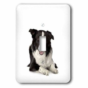 3dRose Border Collie, Double Toggle Switch