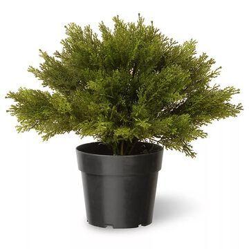 "National Tree Company 15"" Artificial Globe Juniper Plant, Green"