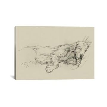 iCanvas Dog Days Iii by Ethan Harper Wrapped Canvas Print - 18