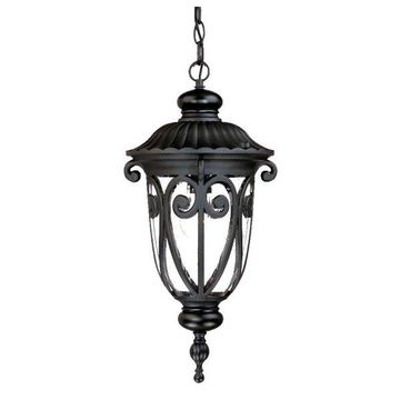 Acclaim Lighting Marbleized Mahogany Naples 1-Light 20.5 Height Outdoor Pendant