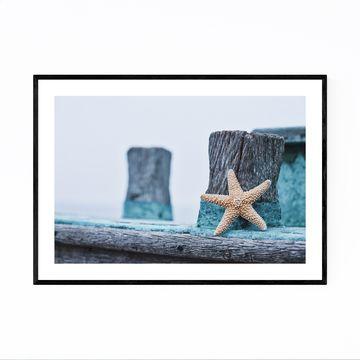 Noir Gallery Starfish Coastal Beach Nautical Framed Art Print