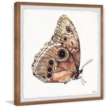 "Parvez Taj ""Brown Mariposa"" Framed Painting Print"