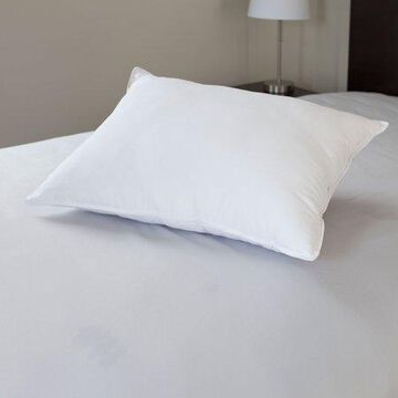 100% Cotton Feather Down Standard Pillow by Somerset Home