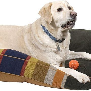 Pendleton Badlands National Park Pillow Dog Bed w/Removable Cover
