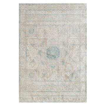 Amer Rugs Cambridge Overdyed Power Loomed Indoor Area Rug
