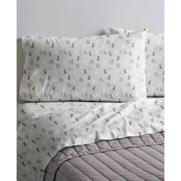 Ed Ellen DeGeneres Printed Cotton Percale King Sheet Set Bedding