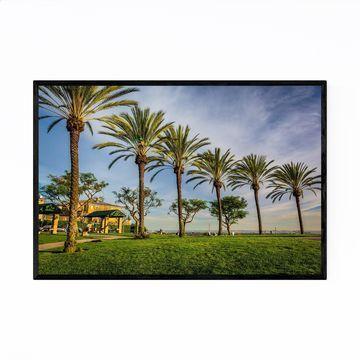 Noir Gallery Palm Trees Long Beach California Framed Art Print