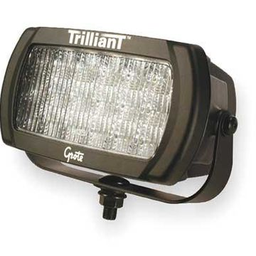 GROTE 63581 Flood Lamp,LED,High Output,Clear
