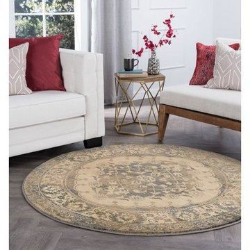 Bliss Rugs Samara Transitional Area Rug