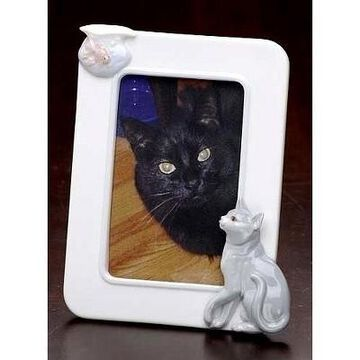 Roman Set of 12 Handcrafted Porcelain Cat and Fish Photo Picture Frames 4