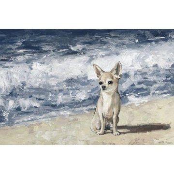 Parvez Taj Chihuahua by the Beach Canvas Wall Art