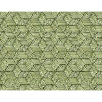Kenneth James Intertwined Green Geometric Wallpaper