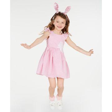 Toddler Girls Embroidered Seersucker Dress